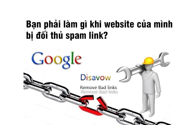 Bạn phải làm gì khi website của mình bị đối thủ spam link?