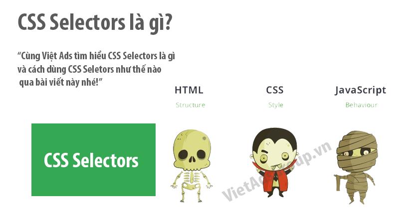CSS Selectors là gì và cách dùng CSS Seletors?