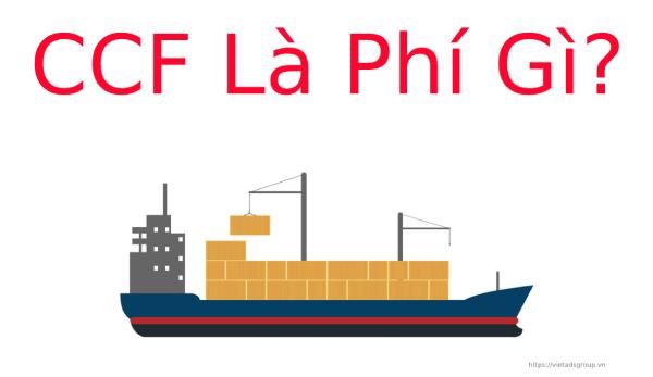 CCF Là Phí Gì? Các Loại Phí Và Phụ Phí Trong Vận Tải Đường Biển