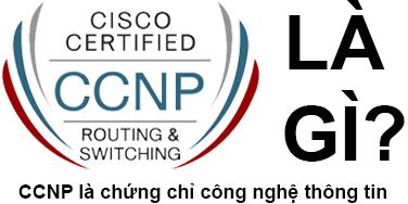 CCNP Là Gì? CCNP Là Gì?