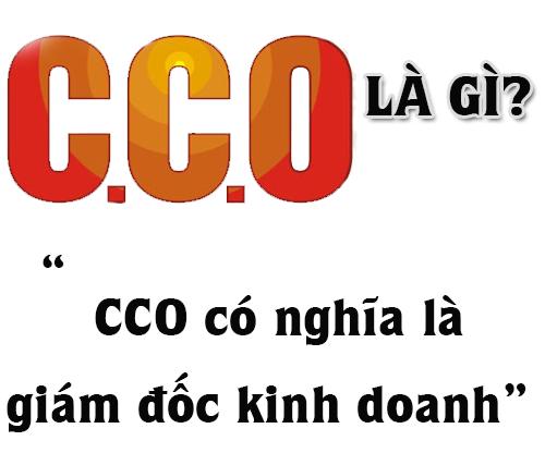 CCO Là Gì? Khái Niệm CCO Là Gi?