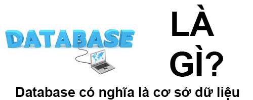 Database Là Gì? Khái Niệm Về Database Là Gì?