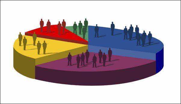 Demographics Là Gì? Tìm Hiểu Về Demographics Là Gì?