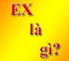 Ex Là Gì? Tìm Hiểu Về Ex Là Gì?
