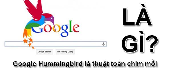 Google Hummingbird Là Gì? Thuật Toán Hummingbird Là Gì?
