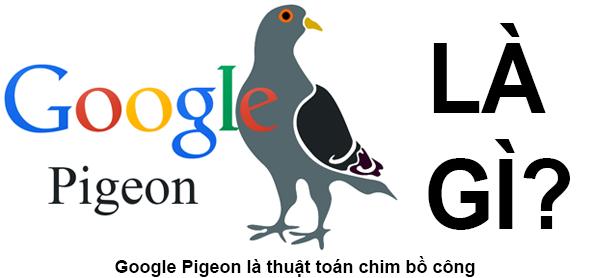 Google Pigeon Là Gì? Thuật Toán Pigeon Là Gì?