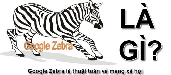 Google Zebra Là Gì? Thuật Toán SEO Google Zebra Là Gì?