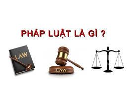 Luật Pháp Là Gì? Tìm Hiểu Về Luật Pháp Là Gì?