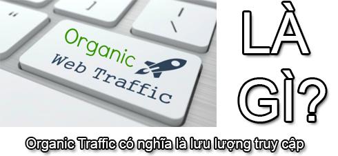 Organic Traffic Là Gì? Tìm Hiểu Về Organic Traffic Là Gì?