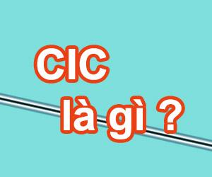 Phí CIC Là Gì? Tìm Hiểu Về Phí CIC Là Gì?