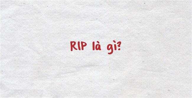 RIP Là Gì? Tìm Hiểu Về RIP Là Gì?
