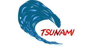 Tsunami Là Gì? Tìm Hiểu Về Tsunami Là Gì?