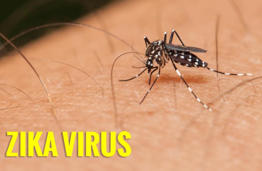 Virus Zika là gì? Tìm Hiểu Về Virus Zika là gì?