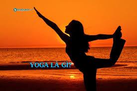 Yoga Là Gì? Tìm Hiểu Về Yoga Là Gì?